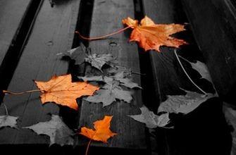 Жизнь как осень